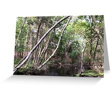 Naturescape 9 Greeting Card