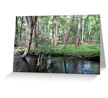 Naturescape 11 Greeting Card