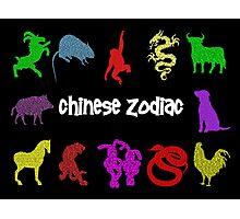 """Chinese Zodiac"" Photographic Print"