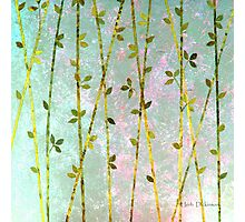 Feng Shui Cane Golden Green Photographic Print