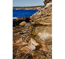 Unusual Rocks 2 Photographic Print