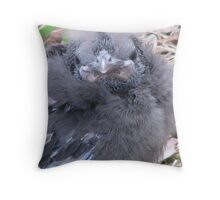 Baby bird Throw Pillow