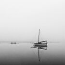 Early Morning, Huon River by NickMonk