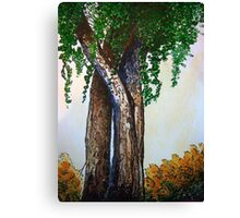 Willowy Tree Canvas Print