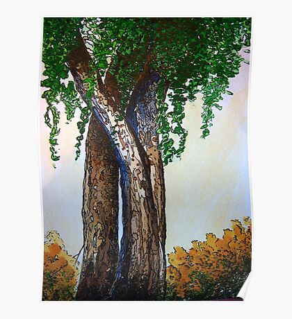Willowy Tree Poster