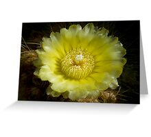 Cactus Close Up Greeting Card