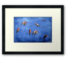 Online Dating..... Framed Print