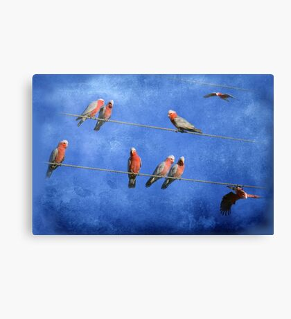 Online Dating..... Canvas Print