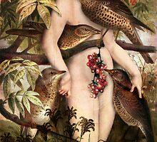 Red fruits by Catrin Welz-Stein