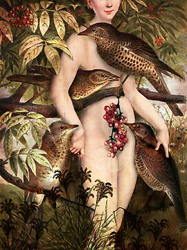 Red fruits by Catrin Welz-Stein