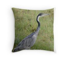 Kenya Black-headed Heron Throw Pillow
