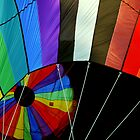 Up, Up, and Away - Hot Air Balloons by Edward Fielding