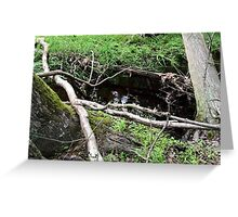 Naturescape 22 Greeting Card