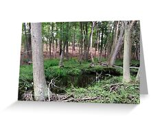 Naturescape 23 Greeting Card
