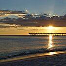 Evening Sunlight by Sandy Keeton