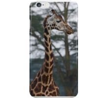 Kenya Giraffe iPhone Case/Skin