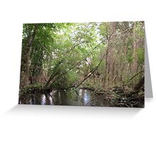 Naturescape 25 Greeting Card
