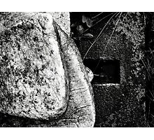 stone cold Photographic Print