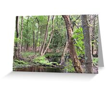 Naturescape 26 Greeting Card