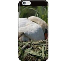 Under Wing - Swan and Cygnet iPhone Case/Skin