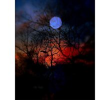 Fire In The Night Photographic Print