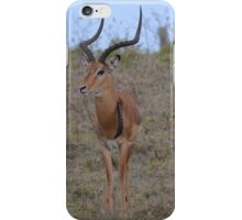 Kenya Impala iPhone Case/Skin