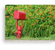Firehouse Mailbox and Fire Hydrant Canvas Print
