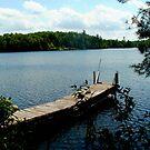 Sterling Pond, Adirdondacks, NY by linmarie
