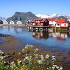 Lofoten Islands by SeeOneSoul
