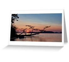 Anacortes Sunset Greeting Card