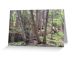 Naturescape 45 Greeting Card