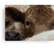 Move over daisy...she wants to take MY picture Canvas Print
