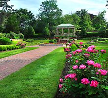 Rose Garden: Lynch Park Beverly, Mass. by john forrant