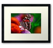 Kaleidoscope Colors Framed Print