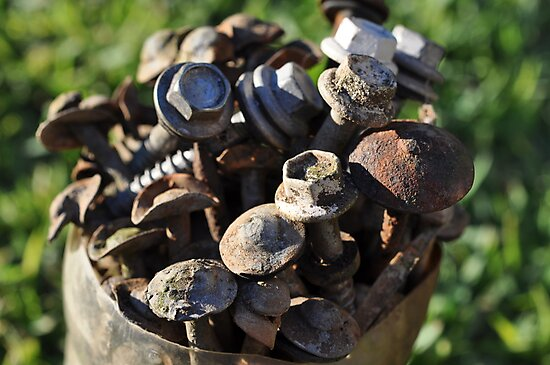 Nuts, bolts & roofing nails by Anthea Bennett