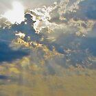 Rays by Farah  Rose