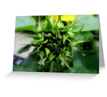 I Promise You a Sunflower... Greeting Card