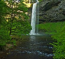Silver Falls State Park... South Falls by Nick Boren
