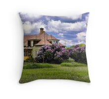 Plains Pioneer Home Throw Pillow