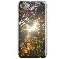 Spring Leaves iPhone Case/Skin