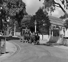 Sovereign Hill Street Scene by petejsmith