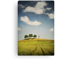 we are 4 Canvas Print