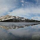 Tenaya Lake Pano by Leasha Hooker