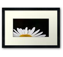 Select Daisy Framed Print