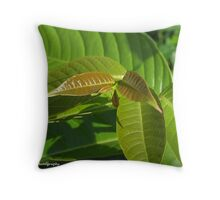 Generations... Throw Pillow