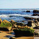 Heisler Beach Rocks: Laguna Beach by E.E. Jacks
