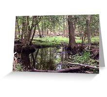 Naturescape 47 Greeting Card