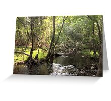 Naturescape 49 Greeting Card