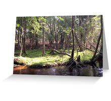Naturescape 50 Greeting Card