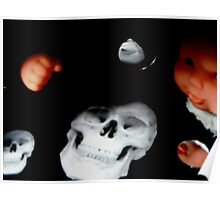 Black Box Skull, Dolly and Reflections Poster